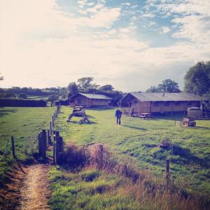 aller farm glamping
