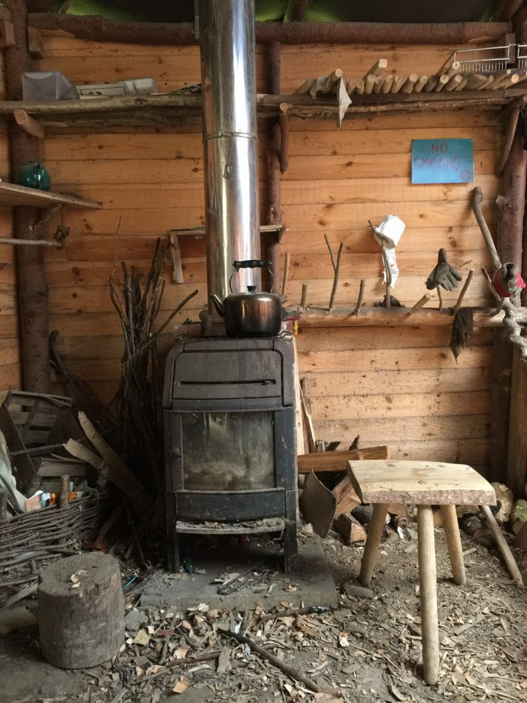 Coppice College Woodburner