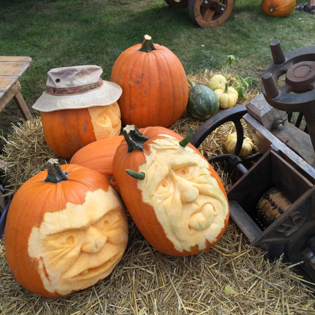 neils-amazing-pumpkins