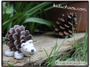 Pine Cone Hedgehog