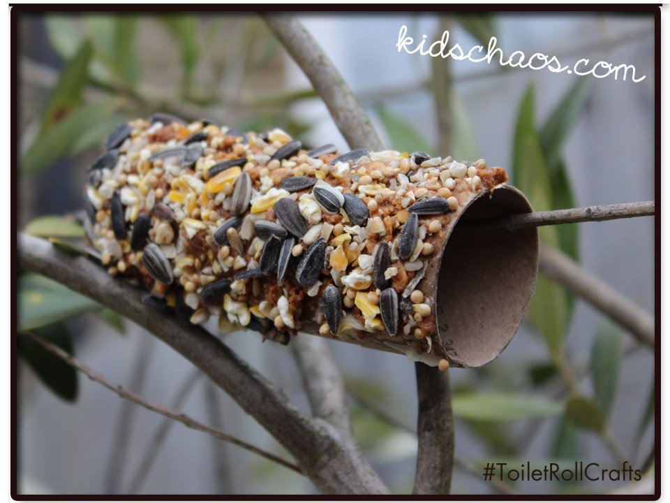 Toilet roll crafts bird seed feeder for Toilet paper tube bird feeder